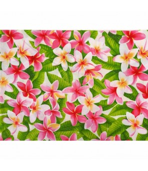 Hawaiian Cotton Fabric OSA-120 [ Plumeria ] Cream