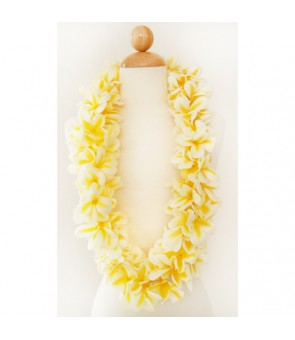 Silk Flower Lei [ Aloha Plumeria / Double ] Yellow