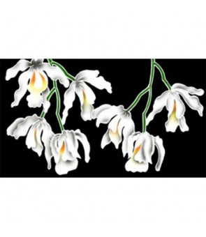 Tahitian Pareo [ White Orchid ] Black