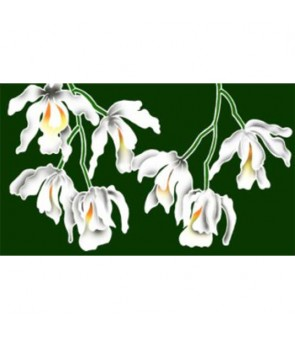 Tahitian Pareo [ White Orchid ] Green