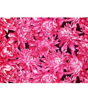 Hawaiian Poly Cotton Fabric LMH-17-857 [ Torch Ginger ] Orchid